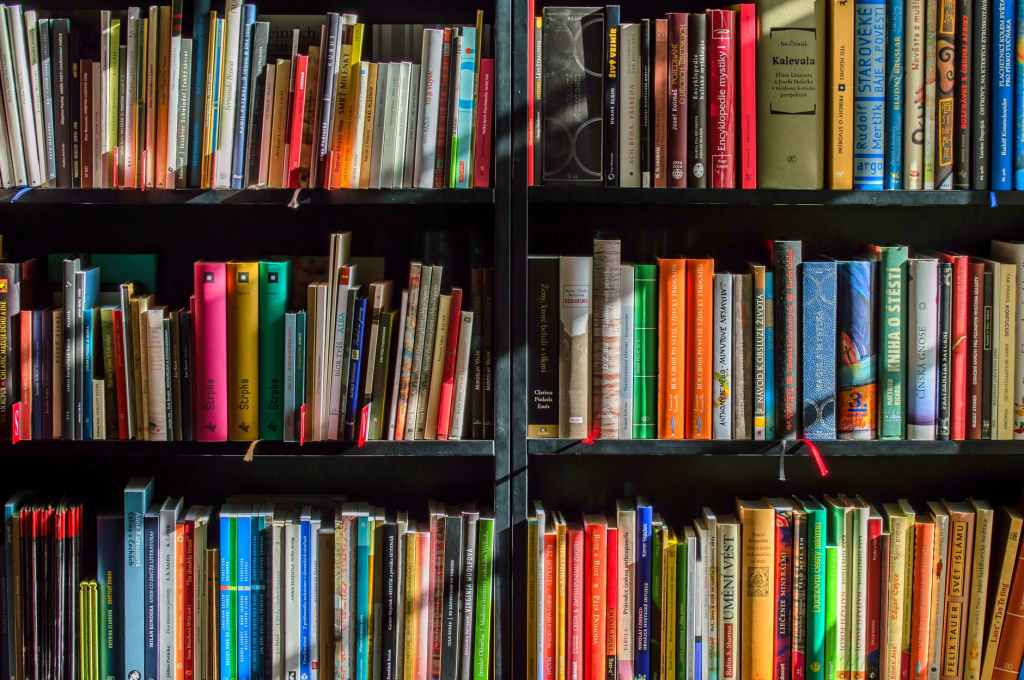 Image of books on three book shelves