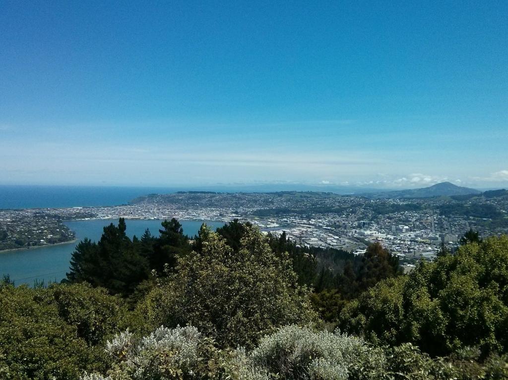 Dunedin from Signal Hill